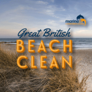 THE GREAT BRITISH BEACH CLEAN UP 2021